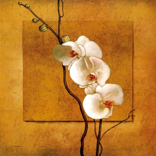 /729-898/printed-flower-canvas-art-with-stretched-frame.jpg