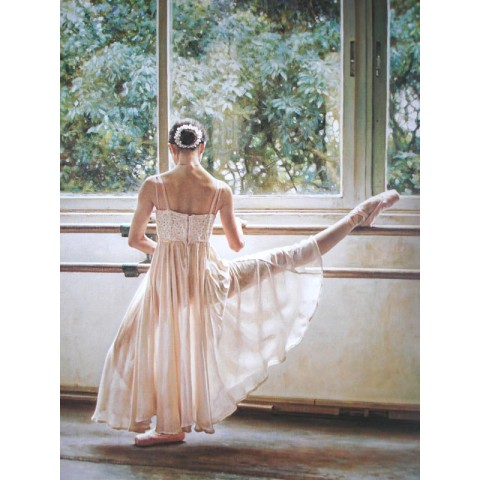 Printed Ballet girl Canvas Art with Stretched Frame